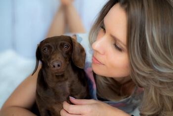 Sesja z psem w domu i plenerze dla Anii
