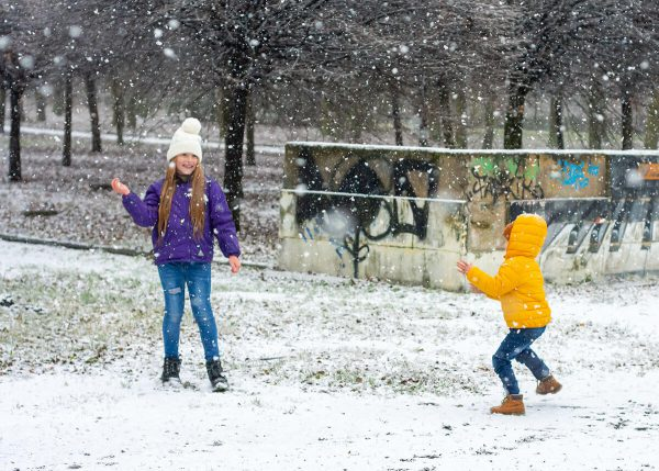 zimowa sesja rodzinna z psami fotograf rodzinny łódź chłopiec i dziewczynka rzucają się śnieżkami